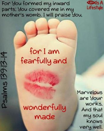 prolife baby feet